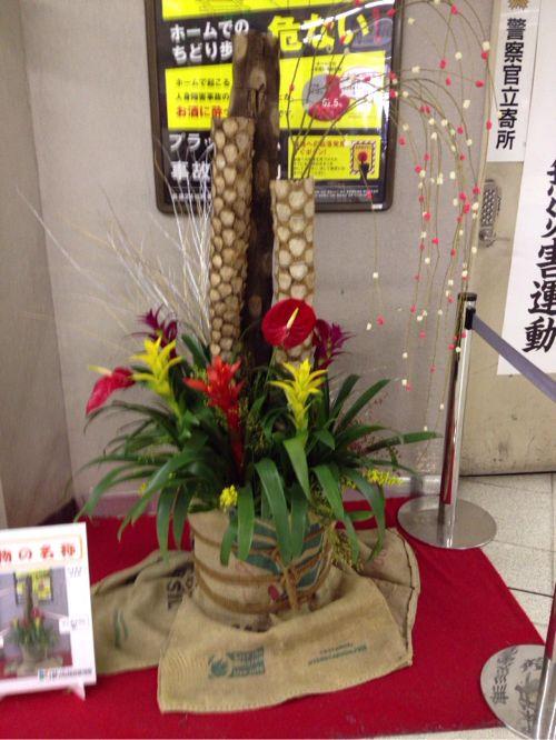 JR新木場駅で発見 熱帯植物の門松がカラフルで可愛い