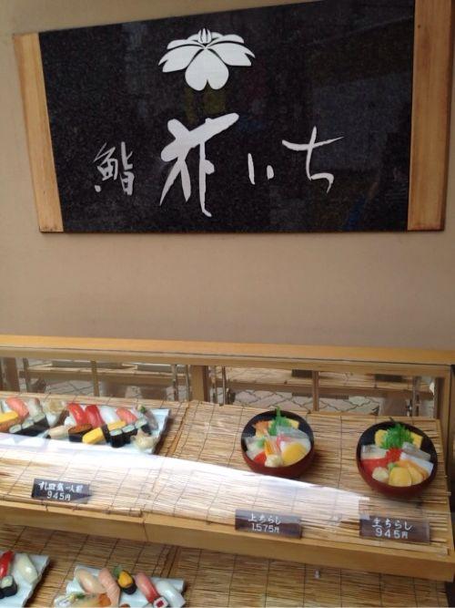 [新潟]岩牡蠣が楽しめるおすし屋さん「花いち」