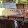 北海道のお土産、「ホリのとうきびチョコ プレミアム」を食べてみた!さっぱりした甘味があとを引く